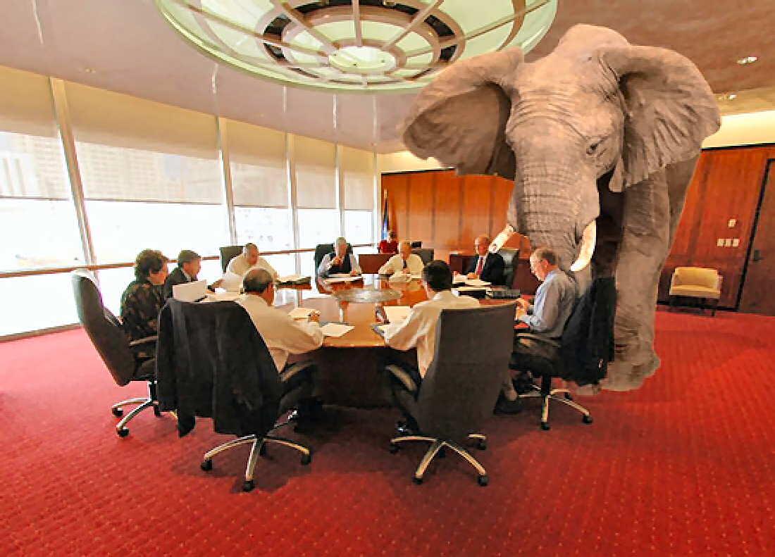 Elephant rooms